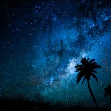 Milky-Way-Palm-sm
